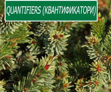 Quantifiers (квантификатори)