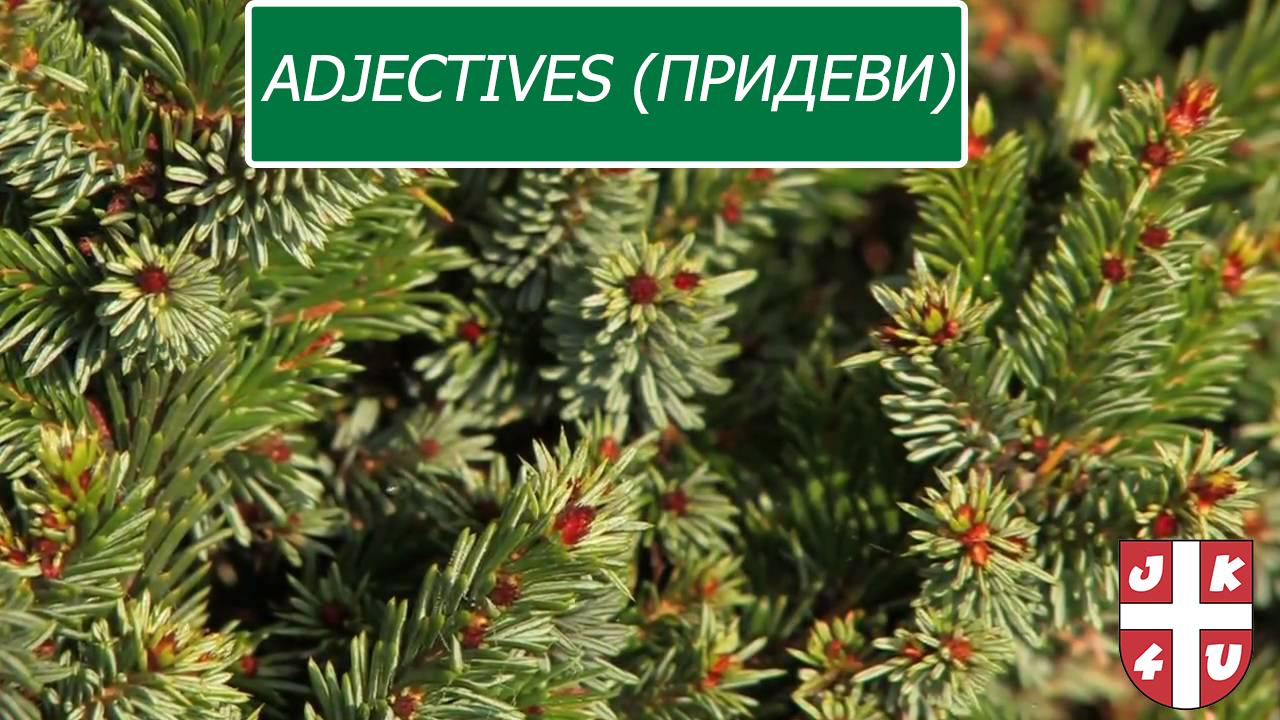 Adjectives (придеви)