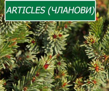 Articles (чланови)